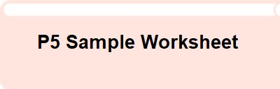 P5 Sample Worksheet